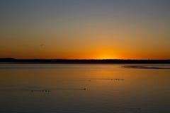 在网路技术海湾的深刻的橙色日落与鸟俄勒冈 库存图片