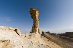 在罗布泊盆地的Yardangs地区 免版税库存照片