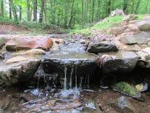 """在罗斯福公园的小河在爱迪生, NJ,美国 Ð """" 免版税库存照片"""