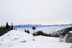 在罗马尼亚山的冬天 免版税库存照片