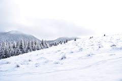 在罗马尼亚山的Selenar风景 库存照片