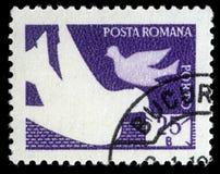 在罗马尼亚打印的邮票显示鸽子、岗位和电信 库存图片