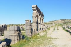 在罗马废墟的Decumanus Maximus,古老罗马市Volubilis 摩洛哥 免版税图库摄影
