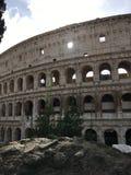 在罗马斗兽场的被日光照射了窗口,罗马 图库摄影