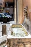 在罗马街道的春天  免版税库存图片