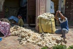 在羊毛被包装入大包在梅克内斯,摩洛哥前,一个人打堆羊毛以金属棒去除杂质 免版税库存照片