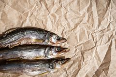 在羊皮纸的三条干鱼 r r 免版税库存图片