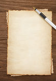 在羊皮纸背景的墨水笔 免版税图库摄影