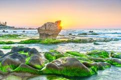 在美丽古老化石的礁石的日出 免版税库存照片