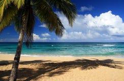 在美丽的加勒比海滩的掌上型计算机 库存图片