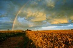 在美丽的天空的彩虹 库存图片