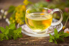 在美丽的杯子的茶 免版税库存图片
