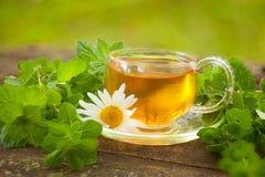 在美丽的杯子的绿茶 免版税图库摄影