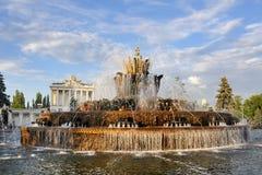 在美丽的松的云彩下的石花喷泉 库存图片
