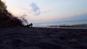 在美丽的海滩岸的小碎波早晨 白天假期海岸线海滩目的地在夏天在黎明 股票视频
