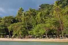 在美丽的热带海滩的棕榈树在酸值张海岛上在泰国 库存照片