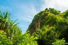 在美丽的热带玛雅人海湾下的小山靠岸,酸值发埃发埃,泰国 库存照片
