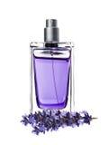 在美丽的瓶和淡紫色的妇女香水开花 图库摄影