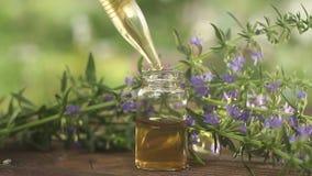 在美丽的瓶的海索草精油在桌上