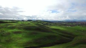 在美丽的草甸的看法从直升机 影视素材