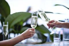 在美丽的玻璃的香宾 见面在城市餐馆或咖啡馆 室内植物临近窗口,白天 免版税库存照片