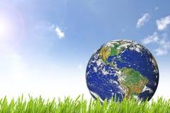 在美丽的绿草的行星地球 图库摄影