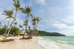 在美丽的Bai圣地的热带棕榈在Phu的Quoc越南靠岸 免版税库存照片