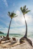 在美丽的Bai圣地的热带棕榈在Phu的Quoc越南靠岸 库存照片