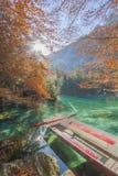 在美丽的Blausee的秋叶 图库摄影