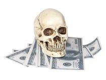 在美元大型装配架的人的头骨 库存照片