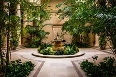 在美国国家艺廊的室内花园区域在华盛顿, 免版税库存图片