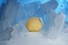 在美好的光的蓝色冰围拢的冻结的隐藏货币bitcoin面孔正面立场 免版税库存图片