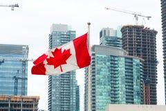 在美好的城市都市风景现代大厦前面的加拿大旗子 免版税库存图片