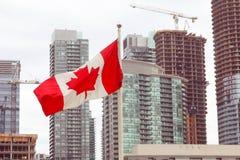 在美好的城市都市风景现代大厦前面的加拿大旗子 库存图片