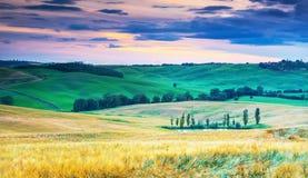 在美好的托斯卡纳风景,意大利的看法 免版税库存图片