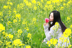 在美好的早期的春天,是最大的在上海在黄色强奸花中间的一个少妇立场归档了 免版税库存图片