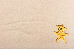 在美好的沙子的两个海星 库存图片
