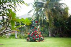 在美好的热带背景的圣诞树 免版税库存照片