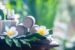 在美好的热带背景的自然化妆用品 免版税库存照片