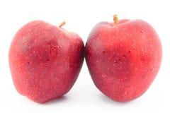 在美好的白色背景的新鲜的红色苹果 图库摄影