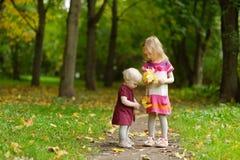 在美好的秋天日的二个姐妹 免版税库存照片