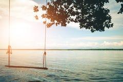 在美好的自然的海滩前的摇摆 库存照片
