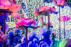 在美好的颜色的每夜的五颜六色的光 莲花 图库摄影