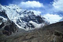在美好的风景的牦牛与在喀喇昆仑高速公路的积雪的山在新疆,中国 免版税库存照片