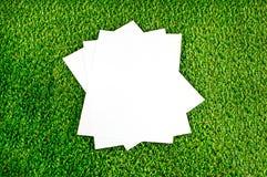在美好的绿草背景的纸 免版税库存图片