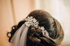 在美妙地被安排的新娘头发的一根珍贵的别针和保留面纱 免版税库存照片