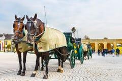 在美泉宫大广场的马支架在维也纳,奥地利 库存照片