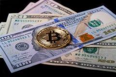 在美金的金黄bitcoin 免版税库存图片