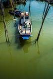 在美洲红树停泊的渔船。 库存图片