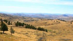 在羚羊中央俄勒冈美国的高沙漠地形电影和植被 股票视频